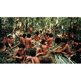 Una connessione mai interrotta: gli Yanomami e la Natura